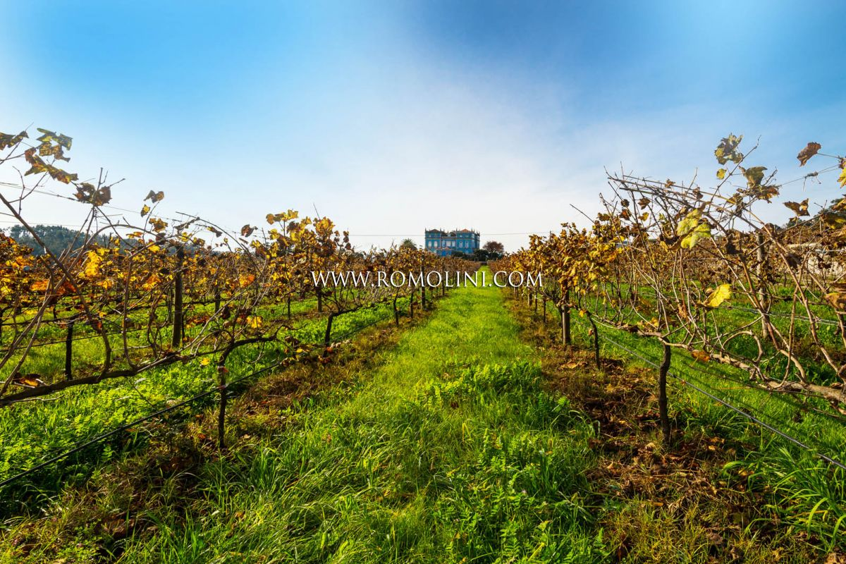 WINE ESTATE FOR SALE PORTUGAL, LUXURY CASTLE HOTEL