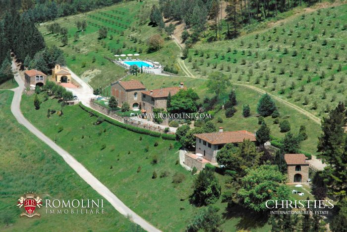 CHIANTI: ESTATE WITH WINE CELLAR, AGRITURISMO AND HUNTING RESERVE