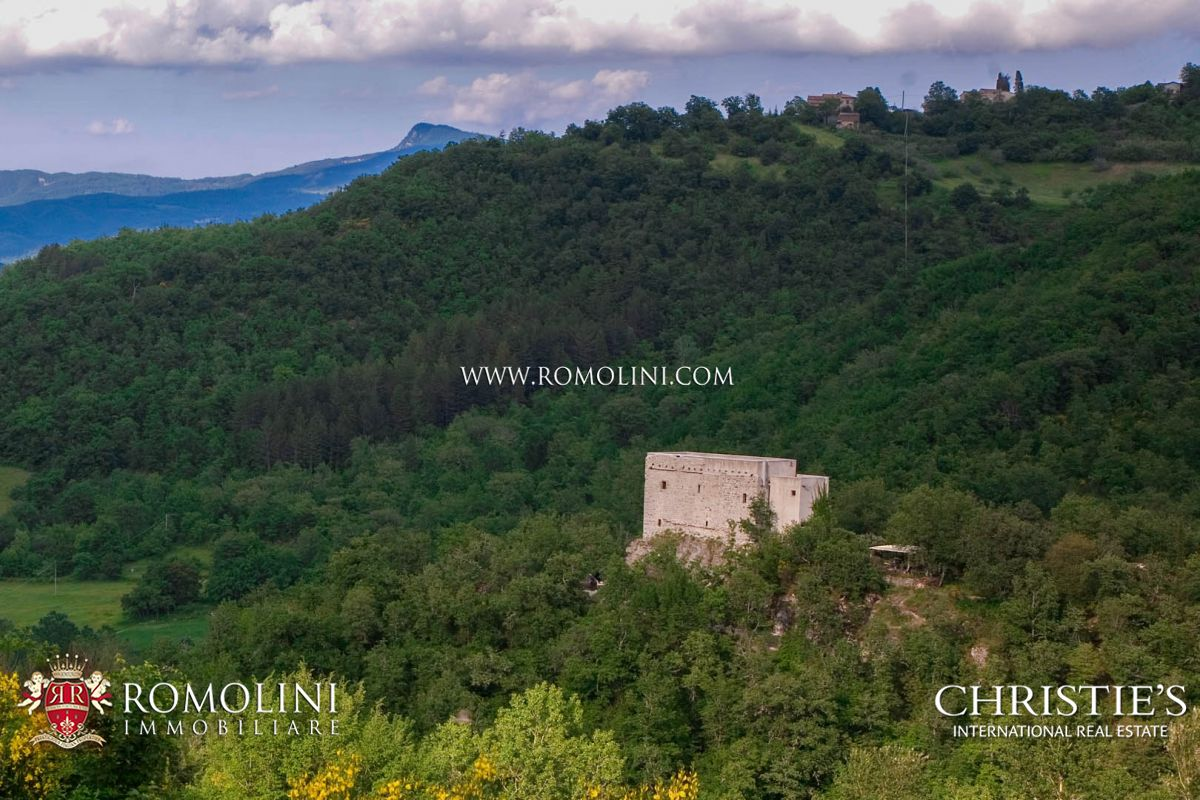 TUSCANY: MEDIEVAL WATCH TOWER WITH POOL AND LAND FOR SALE