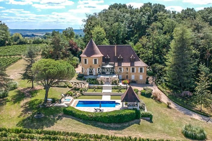 FRENCH VINEYARD CHÂTEAU FOR SALE IN DORDOGNE, FRANCE