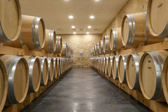 TURNKEY WINERY FOR SALE NEAR BORDEAUX FRANCE