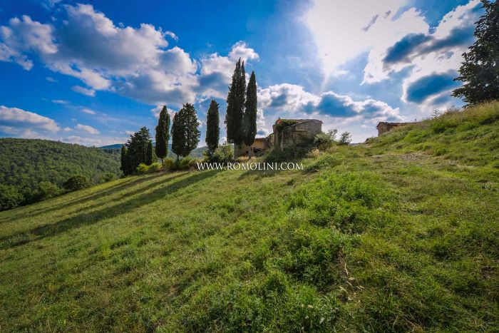 FARMHOUSE TO RESTORED FOR SALE ANGHIARI TUSCANY