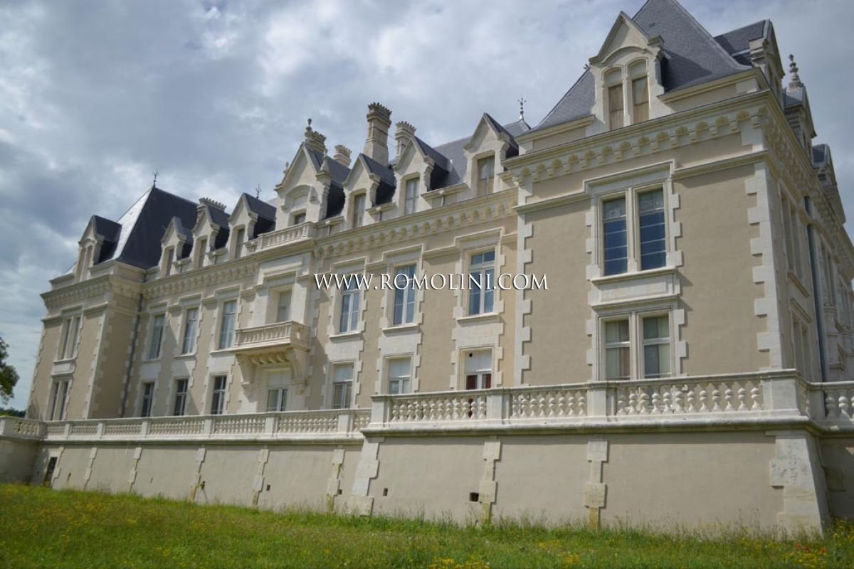 CHATEAU IN FRANCE: CHARMING HOTEL FOR SALE IN COGNAC, FRANCE