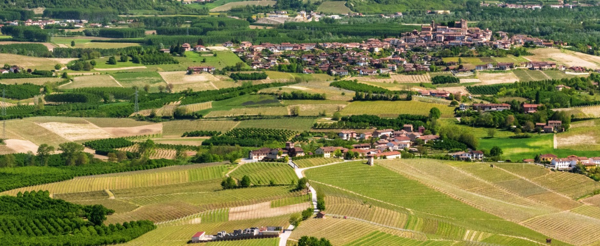 Panoramic view of Monferrato, with a typical town in the background